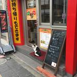 ドネルケバブ - 看板猫(ノラ)
