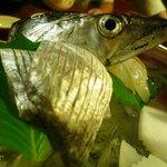 そば草香 - 太刀魚
