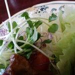 4559361 - お野菜タップリ!