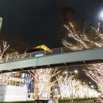 シャンウェイ - イルミネーション輝く表参道から歩いてお店へ