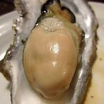 かき小屋 - ふっくらと大ぶりの蒸し牡蠣は垂涎もの!
