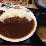 45680879 - オリジナルカレー大(430円)