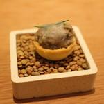 マンサルヴァ - 始まり:レンズ豆とラルド
