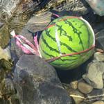 アメリカキャンプ村 - 料理写真:川でスイカを冷やす