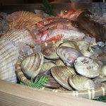 うまいもんや 縁 - 料理写真:築地から仕入れてる新鮮な魚介類