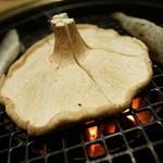 魚バカ 浜料理 厚岸漁業部 祐一郎商店 - 焼くべし焼くべし!