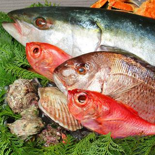 築地や漁港など産地直送の新鮮な鮮魚でおもてなし♪