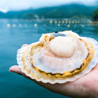 三浦半島、漁師さんから朝獲れ鮮魚が毎日届きます!