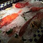 ラ・スコリエーラ - お魚いろいろ