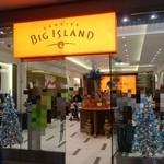 Big Island Candies -