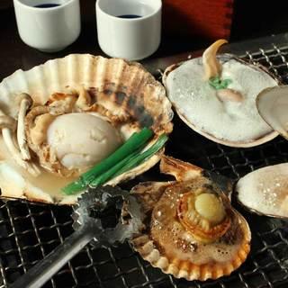 栄養たっぷり!貝は『海の宝石』