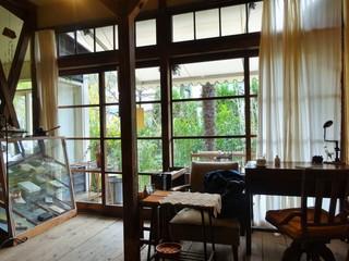 喫茶ミンカ - 庭を望む