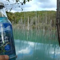小麦畑と青い池-