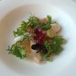 45860817 - 真鯛と小海老のサラダ 柚子胡椒風味のドレッシングと共に