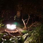 飯田 - 中庭