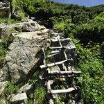 岳沢小屋 - 木製のはしご