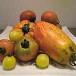 トスカネリア - 岡山県から届く珍しいトマト