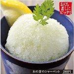 麦酒蔵 hideji 和厨房 - 大人気! 木の芽のシャーベット