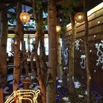 白樺山荘 - 白樺の木たっぷりの店内です。