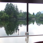4600555 - 金鱗湖を望む・・・