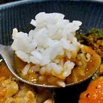 スープカレーlavi - こりこり肉付きヤゲン軟骨to野菜カレー(オリジナルスープ仕立て;3辛;ライス大盛)(2015年12月)