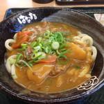 はなまるうどん - カレーうどん中2玉(*´д`*)530円