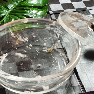 水晶鍋を使用したしゃぶしゃぶコース