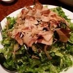 鳥小屋 - グリーンサラダ?