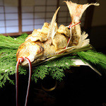 懐石 瓢樹 -