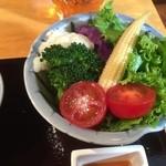 定食家 つき善 - 彩り良いサラダ
