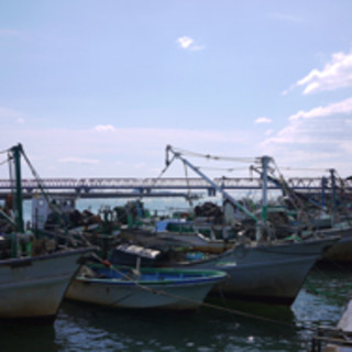 ◆美味しい蛤への追求-創業明治45年、目利きの実績。