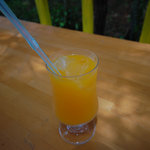 ドラゴンパーク - アップルマンゴー生ジュース
