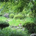 京亭 - 庭の緑が濃い