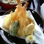 4645275 - 天ぷらざるうどんセットの「天ぷら」