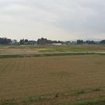 ファームフレアズ - 稲刈りの終わった田んぼ