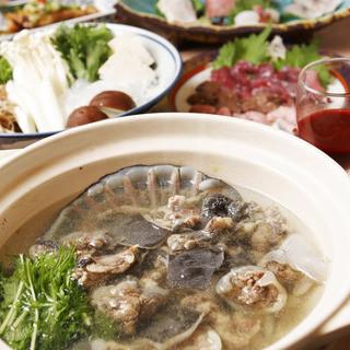 【すっぽん鍋】一番人気の「本格すっぽん料理」!