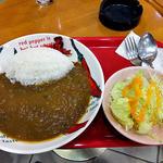 ファースト・ピアー - 12種類の野菜カレー(2016年1月)