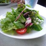 46506066 - 野菜サラダ