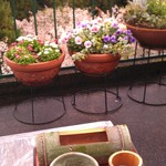 46515059 - H27/4くずきり、抹茶付きと風景