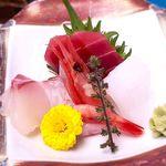 国民宿舎 鵜の岬 - (夕食) Cコース 刺身
