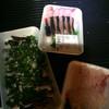 山田海産鮮魚店 - 料理写真: