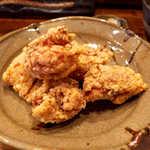 毘央志 - 鳥取産のブランド地鶏。パワフルな肉感、ぷりぷりでジューシー