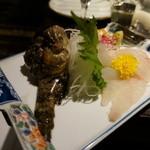 秋田きりたんぽ屋 - おこぜの刺身