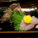 秋田きりたんぽ屋 - アイナメの刺身