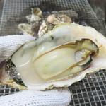 唐泊恵比須かき小屋 - 九州の牡蠣は、東北や広島の牡蠣に比べて、味は濃厚と言えど小粒な場合が多いのですが、 1月以降は身が太るそうで、今回も思ったより身が大きかったです。