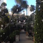 コンテナート - 代々木ヴィレッジは、両側にぎっしりお店が…