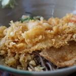 信州そば更科 - 料理写真:冷やしたぬき ミニ500円+エビ天400円