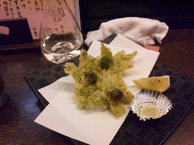 設楽 - 緑が眩しい蕗の薹