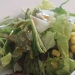 新宿 シュラスコ肉酒場 BONE  - サラダのアップ