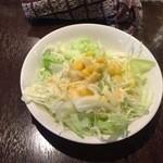 アヴァタール - セットのサラダ